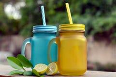 Kulöra Mason Juice Jars med citronen Royaltyfria Foton