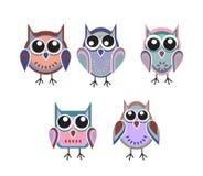 kulöra owls arkivfoton