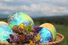 Kulöra påskägg och vårblommor Arkivbilder