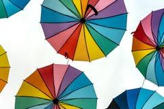 Kulöra paraplyer för stolthet Royaltyfri Bild