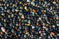 kulöra pebbles Arkivfoton