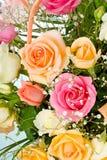 Kulöra rosor i korg Arkivbilder