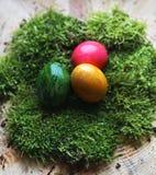 Kulöra verkliga easter ägg på verklig grön mossa Arkivbild