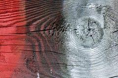 Kulört trä Fotografering för Bildbyråer