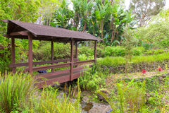 Kula Botanical Garden. Maui. Hawaii. Covered bridge. Tropical landscape. Royalty Free Stock Photos