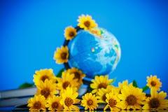 Kula ziemska z książkami i kwiatami Zdjęcia Royalty Free