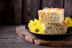 Kulebiak od miękkiego i ciężkiego sera zdrowa żywność Fotografia Stock
