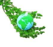 kuli ziemskiej ręki drzewo Obraz Stock