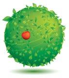 kuli ziemskiej zieleń Obraz Stock