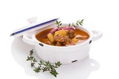 Kulinarisk gulaschsoppa royaltyfria bilder