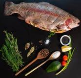 Kulinarisk stilleben med den ny forellen och smaktillsats royaltyfria bilder