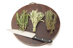 kulinariska örtar arkivbilder