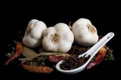 Kulinariska smaktillsatser för medelhavs- bantar Royaltyfria Bilder