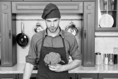 kulinariskt recept Recept för kockmatlagningvegetarian Vegetariska kokkonstrichvitaminer Matlagning för förkläde för mankockkläde royaltyfri bild