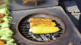 Kulinarna kukurudza na grillu zbiory wideo
