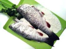Kulinarna ryba, ścierwa surowa ryba obrazy royalty free