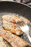 kulinarna ryba Obrazy Stock