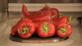 Kulinarni dzwonkowi pieprze na elektrycznej kuchence zbiory wideo