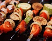 kulinarni grilla mięs warzywa Obrazy Stock
