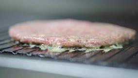 Kulinarni hamburgerów cutlets zbiory
