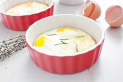 Kulinarni jajka piec z macierzanką i rozmarynami fotografia stock