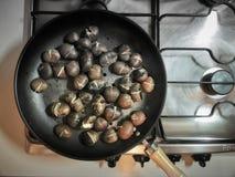 Kulinarni kasztany na niecce zdjęcie royalty free