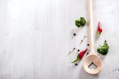 Kulinarny łyżki kopii astronautycznego jedzenia tło, weganin lub zdrowy kulinarny pojęcie, obraz stock