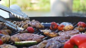 Kulinarny grill wyśmienicie i warzywa na grillu zbiory wideo