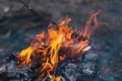 Kulinarny jedzenie przy ogniskiem w na wolnym powietrzu Obrazy Stock