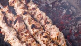 Kulinarny kebab na węglach Piec na grillu wieprzowina na skewers Materiał filmowy klamerka 4K, UHG HD, Ultra zbiory wideo