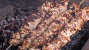 Kulinarny kebab na węglach Piec na grillu wieprzowina na skewers Materiał filmowy klamerka 4K, UHG HD, Ultra zbiory