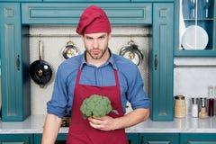 kulinarny przepis Szefa kuchni kulinarny jarski przepis Jarskie kuchni bogactwa witaminy Mężczyzna szefa kuchni odzieży fartucha  obraz stock