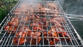 Kulinarny węgla drzewnego kurczaka grill zdjęcie wideo