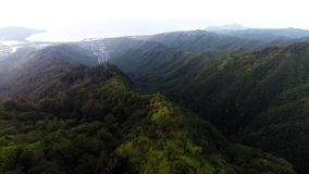 Kuliououberg Ridge Trail in Honolulu, Hawaï stock videobeelden