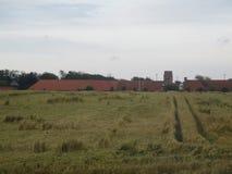 kull för fält för bakgrundshavreafton Royaltyfria Bilder