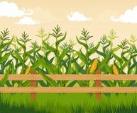 kull för fält för bakgrundshavreafton stock illustrationer