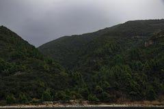 kullar Arkivfoto