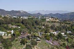 kullar hollywood returnerar tecknet arkivfoto