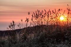 Kullar i Sanen Francisco Bay Area på solnedgången Arkivbild