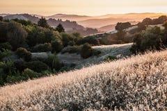 Kullar i Sanen Francisco Bay Area på solnedgången Royaltyfria Bilder