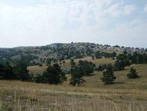 Kullar och berg som täckas med träd royaltyfri foto