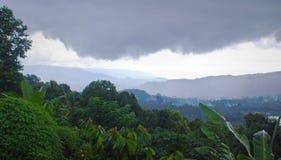 Kullar och grönska i Bali bygd, Indonesien Arkivbilder