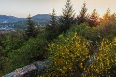 Kullar runt om Baden-Baden Royaltyfri Foto