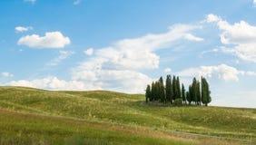 Kullarna av Montalcino, en vinstad, Siena Arkivbild
