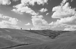 Kullarna av Montalcino, en vinstad, Siena Royaltyfri Fotografi