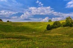 Kulle för grönt gräs och ett träd Fotografering för Bildbyråer