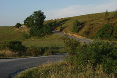 Kulle i bygden, med gruppen av att beta för kor och vägen som klättrar den Royaltyfria Bilder