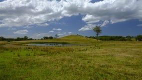 Kulle nära Morisset, NSW, Australien royaltyfria foton