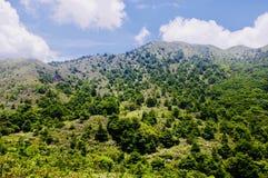 Kulle och berg, Ngong Ping Trail på den Lantau ön royaltyfri bild