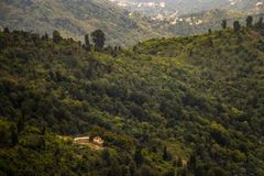 Kulle och skog royaltyfri fotografi